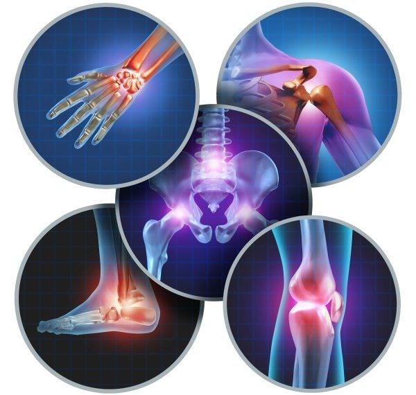 ortopedia beiner