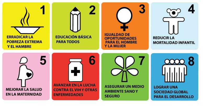 Figura 1. Objetivos de Desarrollo del Milenio (ODM)
